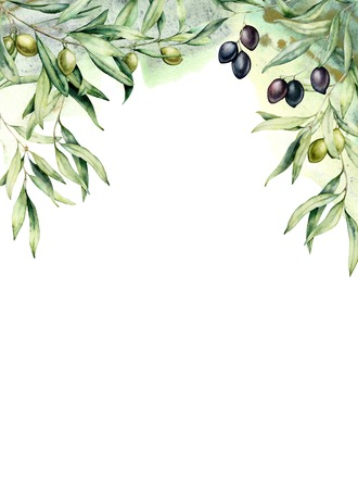 Watercolor card with olive branches, green and black berries. Hand painted border with olives, leaves isolated on white background. Floral botanical illustration for design, print.