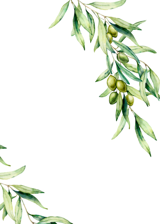 Watercolor card with olive tree branch, green olives and leaves. Hand painted floral illustration isolated on white background. Botanical illustration for design, print. Greeting template for design.