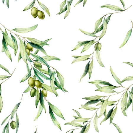 Watercolor seamless pattern with olive tree branch, green olives, and leaves. Hand painted botanical illustration isolated on white background for design, print, fabric or background.