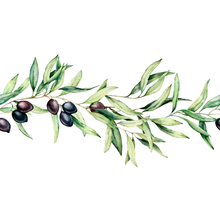 Watercolor seamless border with black olive, leaves and branch. Hand painted floral illustration isolated on white background. Botanical banner for design or print. Green plants.