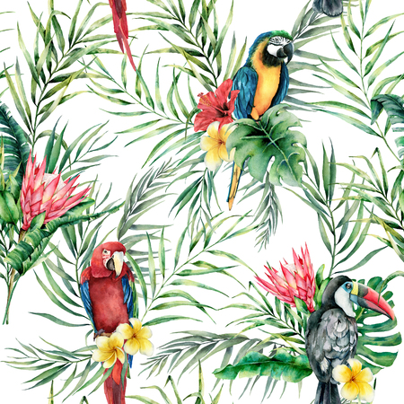 Watercolor parrot and toucan seamless pattern. Hand painted illustration with bird, protea and palm leaves isolated on white background. Wildlife illustration for design, print, fabric, background. Stock Photo