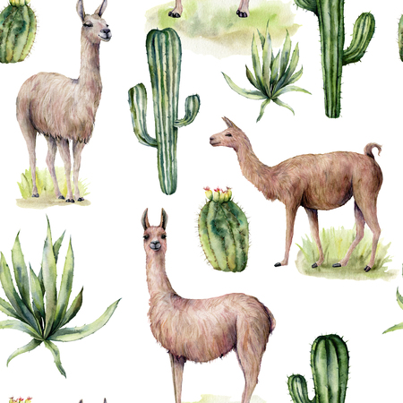 Watercolor seamless pattern with llama and desert cacti. Hand painted traition botanical illustration with animal and floral on white background. For design, print, fabric or background. Stock Photo