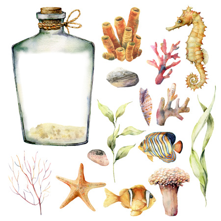 Watercolor nautical set with coral animals, plants and fish. Hand painted underwater branches, starfish, bottle isolated on white background. Sea life illustration. For design, print or background. Stock Photo