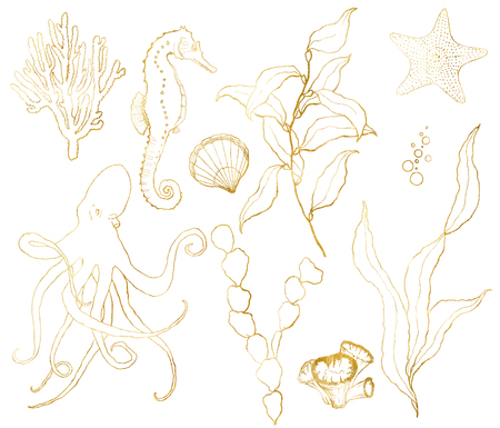 Vector golden sketch set with underwater life. Hand painted seahorse, laminaria, starfish and shell isolated on white background. Aquatic line art illustration for design, print or background. Ilustração