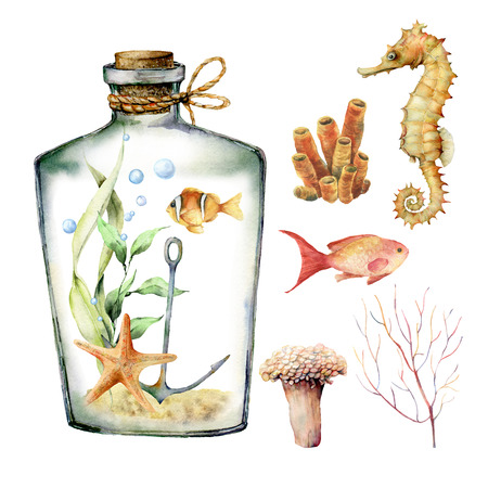 Watercolor aquarium with coral animals, plants and fish. Hand painted underwater branches, starfish, bottle isolated on white background. Sea life illustration for design, print or background. Stock Photo