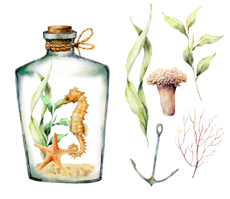 Watercolor nautical set with coral animals, plants, fish and anchor. Hand painted underwater branches, starfish, bottle isolated on white background. Illustration for design, print or background.