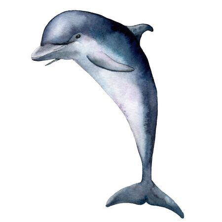 Watercolor dolphin. Underwater animal illustration isolated on white background. For design, prints or background.