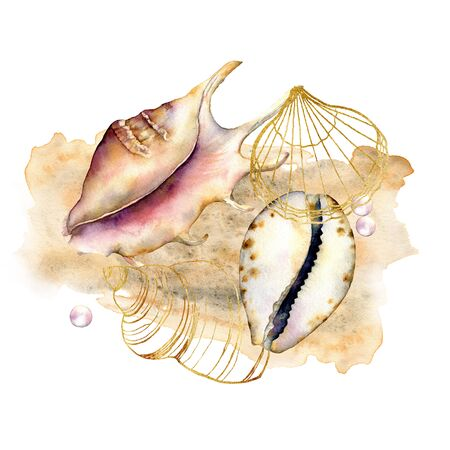 Watercolor composition with shells and pearls. Hand painted underwater elements isolated on white background. Aquatic line art illustration for design, print or background. Trendy nautical collection. Banco de Imagens