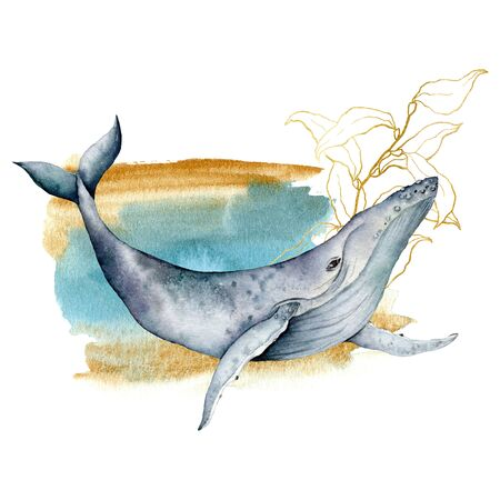 Watercolor card with blue whale and line art laminaria. Hand painted underwater composition isolated on white background. Wildlife illustrationor for design, fabric prints or background. Stock Photo