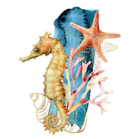 Watercolor seahorse, shell and starfish composition. Hand painted underwater illustration with coral reef isolated on white background. Aquatic illustration for design, print or background.