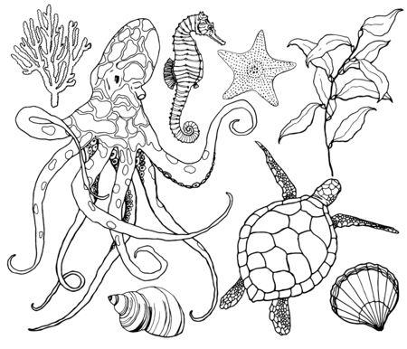 Vector de arte lineal con pulpo y vida submarina. Caballito de mar pintado a mano, tortuga, coral, estrella de mar y concha aislado sobre fondo blanco. Ilustración de contorno acuático para diseño, impresión, fondo. Ilustración de vector