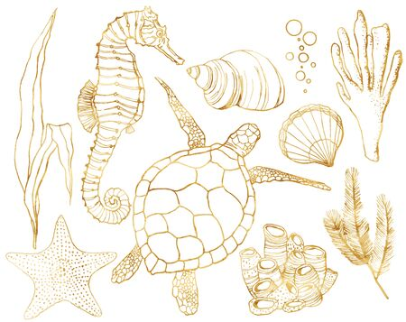 Vector set with underwater animals and coral reef plants. Hand painted golden turtle, seahorse, laminaria, coral and shell isolated on white background. Line art illustration for design, print. Stock Vector - 127570023