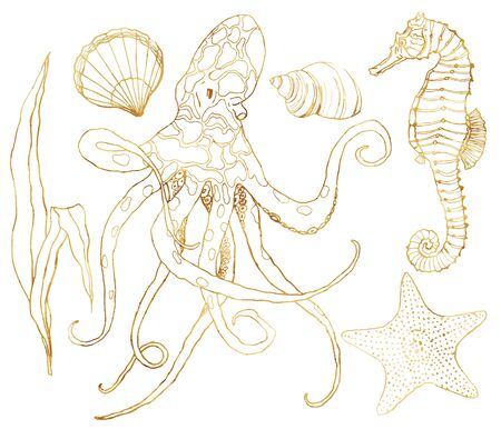 Vector set with underwater wildlife. Hand painted golden octopus, seahorse, starfish and shell isolated on white background. Aquatic line art illustration for design, print or background. Stock Vector - 127570026
