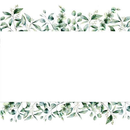 Watercolor eucalyptus seamless banner. Hand painted eucalyptus branch and leaves isolated on white background. Floral illustration for design, print, fabric or background.