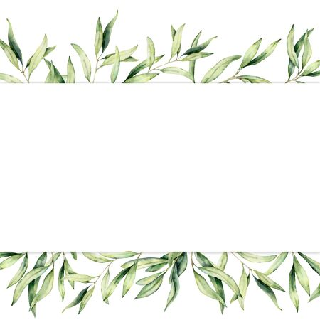 Watercolor banner with olive branch. Hand painted botanical border isolated on white background. Floral illustration for design, print, fabric or background.
