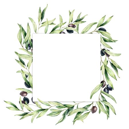 Watercolor border with green and black olive berries. Hand painted botanical card with olives branch isolated on white background. Floral illustration for design, print, fabric or background.