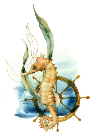 Watercolor underwater card with seahorse. Hand painted composition with wheel and golden laminaria isolated on white background. Line art illustration for design, fabric prints or background.