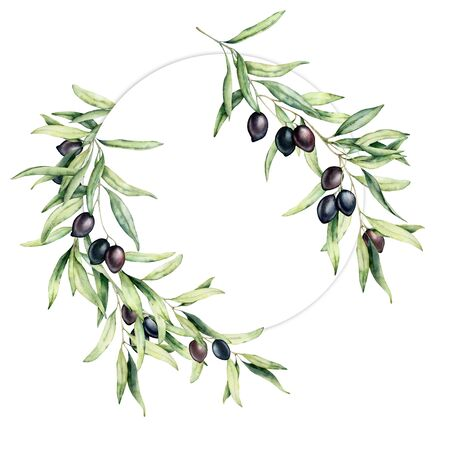 Waterverfkroon met olijfbladeren en bessen. Handgeschilderde bloemen cirkel grens met olijf fruit en boomtakken met bladeren geïsoleerd op een witte achtergrond. Voor ontwerp, print en stof. Stockfoto