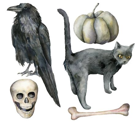 Watercolor halloween set with crow and cat. Hand painted holiday set with pumpkin, scull and bone isolated on white background. Illustration for design, print or background.