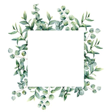 Watercolor eucaliptus leaves frame. Hand painted baby, seeded and silver dollar eucalyptus branch isolated on white background. Floral illustration for design, print, fabric or background.
