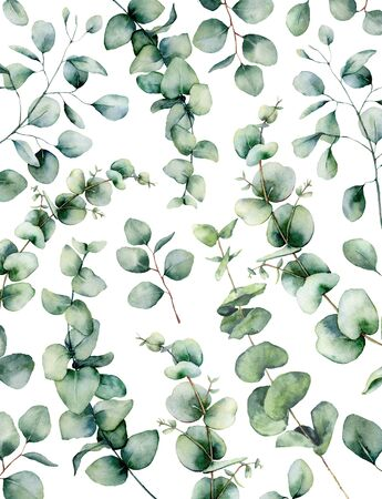 Watercolor eucalyptus card. Hand painted eucalyptus branch and leaves isolated on white background. Floral illustration for design, print, fabric or background.
