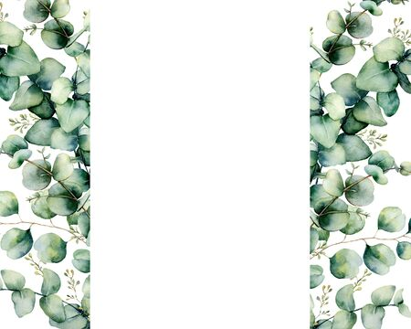 Watercolor eucalyptus banner template. Hand painted eucalyptus branch and leaves isolated on white background. Floral illustration for design, print, fabric or background. Stockfoto