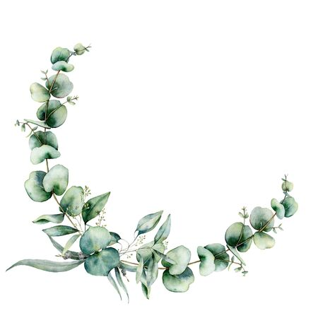 Watercolor floral wreath with eucalyptus leaves. Hand painted illustration with branches and leaves isolated on white background. Floral illustration for design, print, fabric or background.