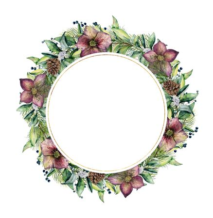Watercolor Christmas wreath with hellebore flowers. Hand painted Christmas tree branches, cedars with leaves isolated on white background. Floral botanical border for design, background or print.