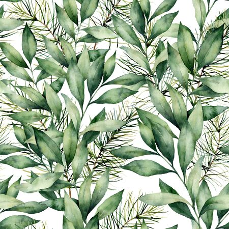 Watercolor eucalyptus and fir seamless background. Hand painted eucalyptus and spruce branches composition isolated on white background. Holiday floral illustration for design, print or background.