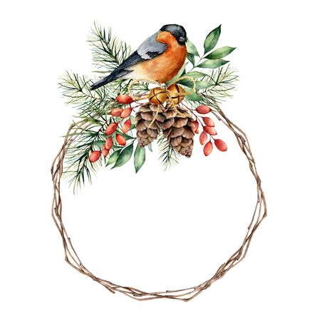 Watercolor Christmas wreath with bullfinch and berries. Hand painted eucalyptus leaves, pine cones, berries, fir branches isolated on white background. Holiday symbol for design, print or background.