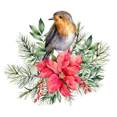 Watercolor Christmas card with robin and floral decor. Hand painted bird, poinsettia, berries, fir and eucalyptus branches isolated on white background. Holiday print for design, print or background.