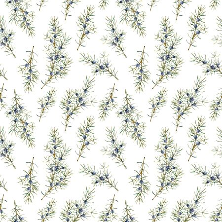 Watercolor juniper seamless pattern. Hand painted blue berries, branch and pine needles composition isolated on white background. Holiday floral illustration for design, print or background.