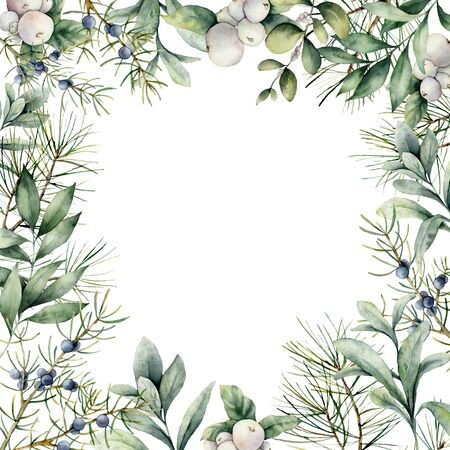 Watercolor winter plants card. Hand painted frame with juniper, snowberry, lambs ears and eucalyptus branch isolated on white background. Floral illustration for design, print, fabric or background. Stock Photo