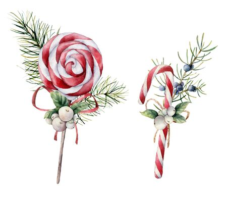 Watercolor Christmas candies. Hand painted candy cane, striped peppermint lollipop, fir branch and snowberries isolated on white background. Sweet illustration for design, print, fabric or background.