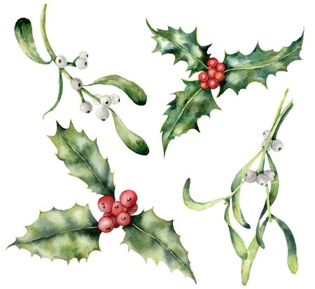 Watercolor holly and mistletoe Christmas set. Hand painted holiday plant with red and white berries isolated on white background. Winter botanical illustration for design, print, background.