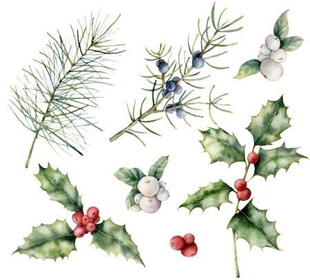 Watercolor berries Christmas seamless pattern. Hand painted holiday plant with holly, mistletoered and juniper isolated on white background. Winter floral illustration for design, print, background.