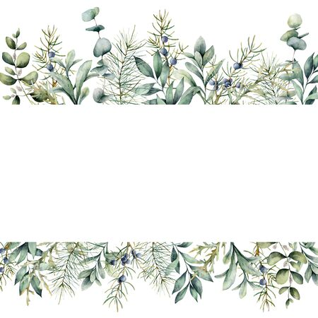 Watercolor Christmas plants banner. Hand painted juniper, snowberry, fir and eucalyptus branch isolated on white background. Floral illustration for design, print, fabric or background.
