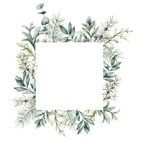 Watercolor Christmas plants card. Hand painted frame with juniper, snowberry, fir and eucalyptus branch isolated on white background. Floral illustration for design, print, fabric or background Stockfoto