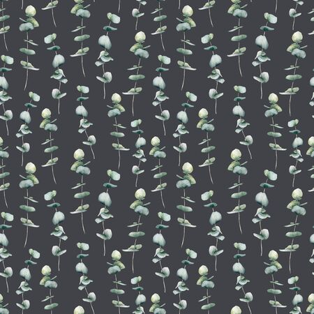 Watercolor dark seamless pattern with baby blue eucalyptus. Hand painted eucalyptus round leaves and branch isolated on black background. Floral illustration for design, print, fabric or background.