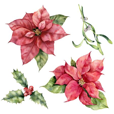 Watercolor Christmas set with poinsettia, holly and mistletoe. Hand painted holiday plant with berries isolated on white background. Winter botanical illustration for design, print or background Stockfoto