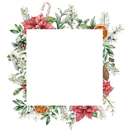 Watercolor Christmas frame with poinsettia decor. Hand painted fir card with leaves, pine cones, holly, branches and orange isolated on white background. Floral illustration for design or print.