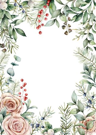 Watercolor Christmas flowers and plants card. Hand painted frame with juniper, fir, eucalyptus and roses isolated on white background. Floral illustration for design, print, fabric or background Stock Photo