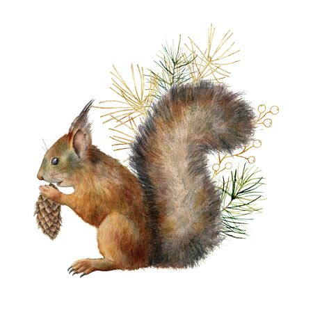Watercolor Christmas composition with squirrel and golden branch. Hand painted winter card with pine needles and cones isolated on white background. Ilustration for design, print, fabric, background.