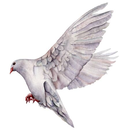 Watercolor card with the flight of a white dove. Hand painted greeting postcard with pigeon bird isolated on white background. Easter illustration for design, print, fabric or background. Spring bird.