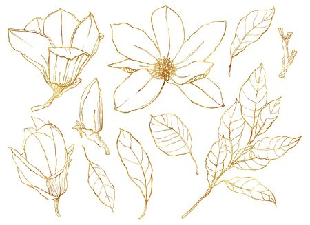 Watercolor floral set with golden flowers. Hand painted line art magnolias and leaves isolated on white background. Spring illustration for design, print, fabric or background. Stock fotó