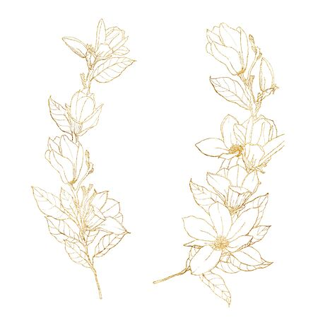 Watercolor golden set with line art magnolias. Hand painted floral card with flowers, branch, leaves and buds isolated on white background. Spring illustration for design, print, fabric or background