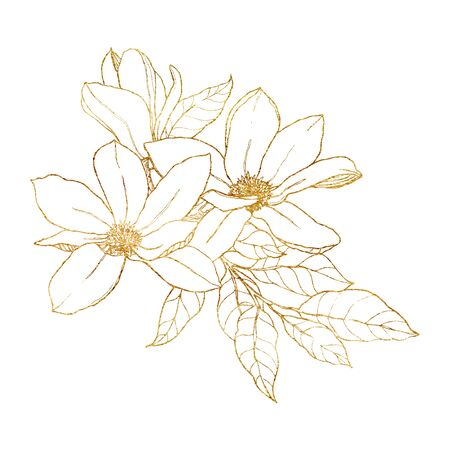 Watercolor line art bouquet with golden magnolias. Hand painted floral illustration with flowers, branch, leaves and buds isolated on white background. For spring design, print, fabric or background