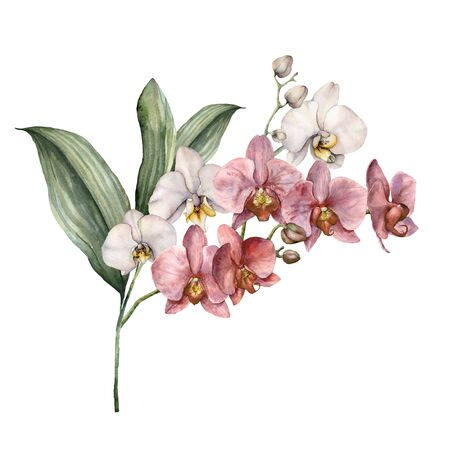 Watercolor bouquet with pink and white orchids. Hand painted tropical card with flowers, branches and leaves isolated on white background. Floral illustration for design, print, background.