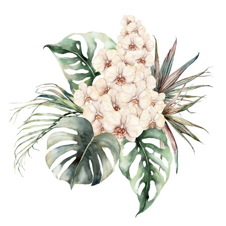 Watercolor bouquet with orchids, monstera and coconut leaves. Hand painted tropical card with flowers and palm branches isolated on white background. Floral illustration for design, print, background. 版權商用圖片