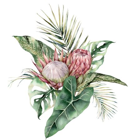 Watercolor tropical card with King and Queen proteas, palm and monstera leaves. Hand painted pink flowers and leaves. Floral illustration isolated on white background for design, print, background.